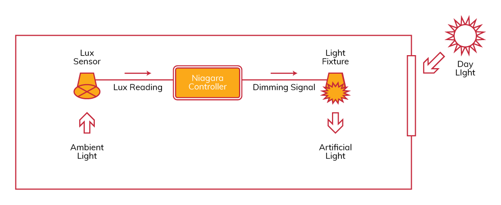 Leap's Dynamic Day Light Harvesting Controls